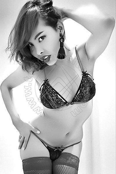 Asia Young CINISELLO BALSAMO 3895203577